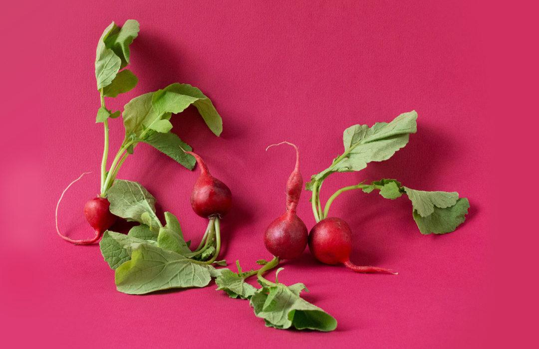 Recette de pesto maison aux fanes de radis