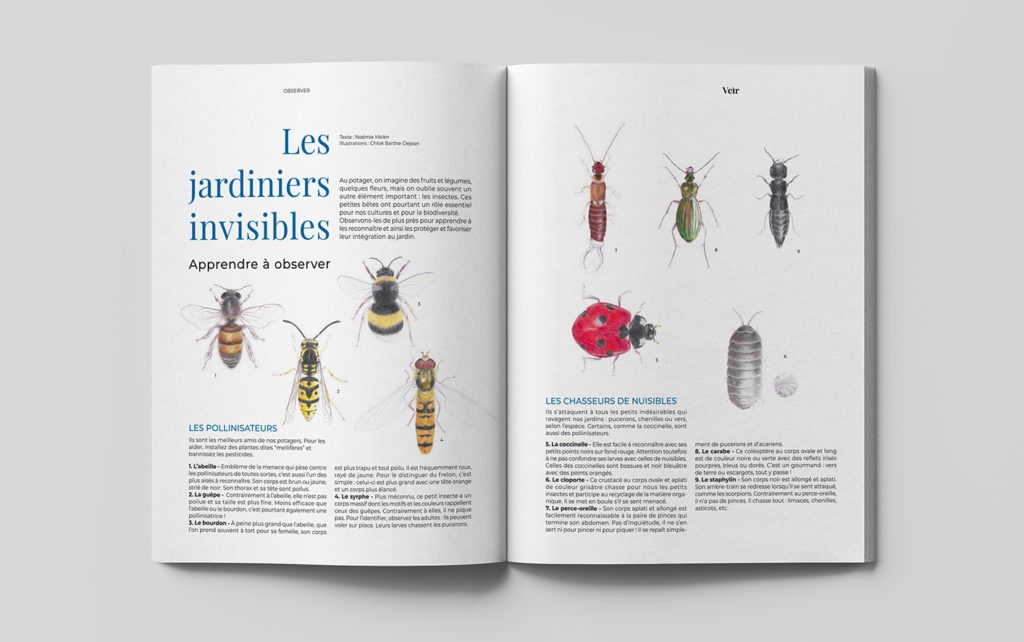 Veir Magazine page insectes