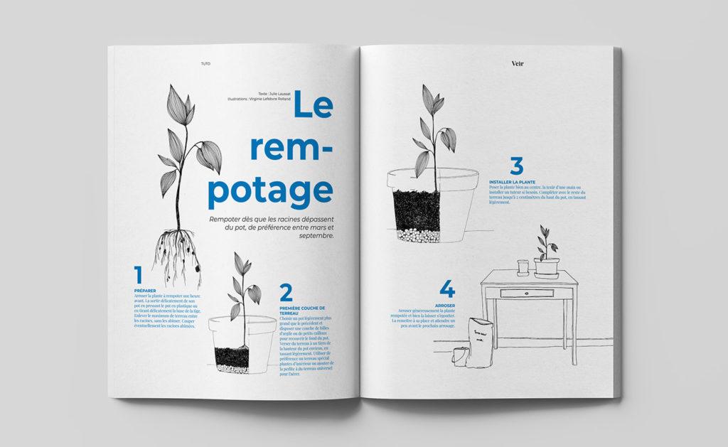 magazine veir rempotage plantes